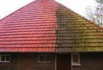 dakpannen-reiniging2