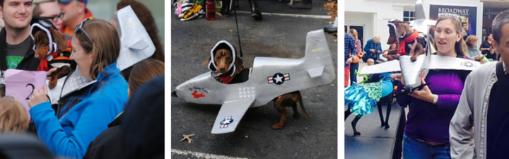 Doxie Ludwig's Flight to Fame