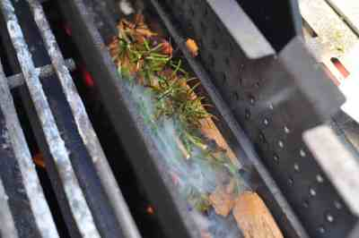 Smoking wood and rosemary in the smoker box