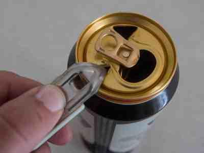 BeerCanDuck-1030819