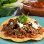 A tostada covered with salsa and crisped shredded pork, sprinkled with sliced cabbage and topped with a piece of cilantro, with green onions and salsa visible in the background