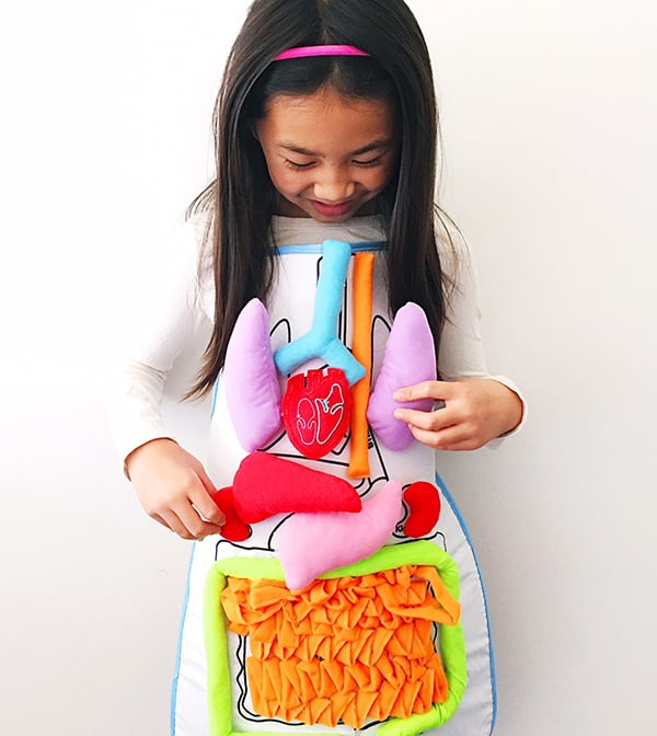 What's Inside Me Anatomy Apron