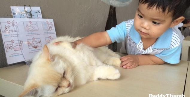 สัตว์เลี้ยงช่วยให้เด็กฉลาด