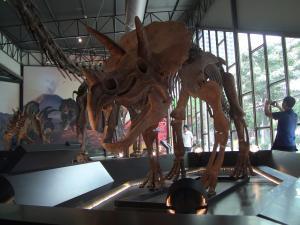DinosaurPlanet16