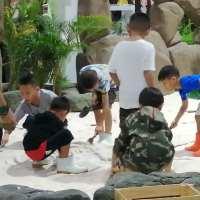 เด็กเรียนรู้การเล่นทราย