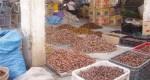 سوق التمور بالريصاني… جودة تقاوم تقليد «المجهول» الفيلالي