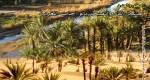مشكل الماء والتصحر بالواحات المغربية محور العدد الجديد من مجلة واحات المغرب التي تصدر من الرشيدية