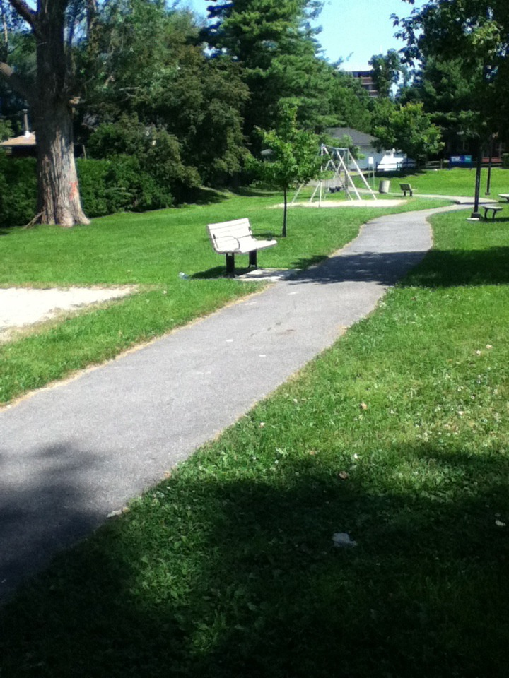 Image of a bench in a park