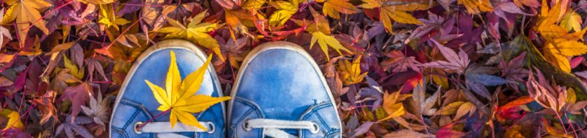 Sneakers in leaves