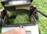 Craftsman Lawn Mower_1843