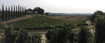 Briar-Rose-Winery-View