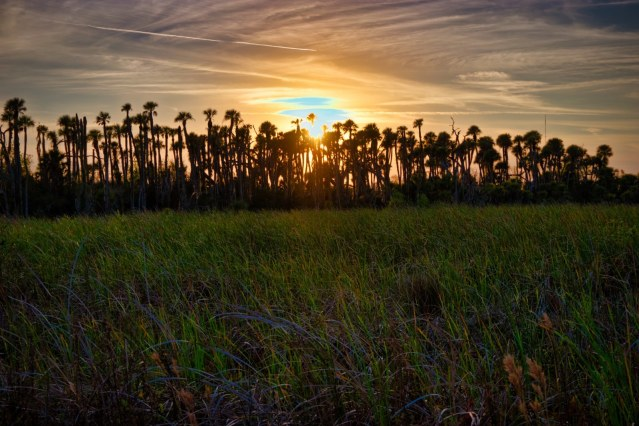 Orlando Wetlands Park Review - The Park at Sunset