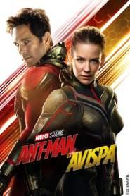Ant-Man – El Hombre Hormiga y La Avispa – Latino HD 1080p – Online