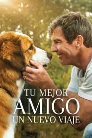 La razón de estar contigo 2: Un nuevo viaje – Latino HD 1080p – Online