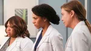 Anatomía según Grey: 17×10 – Latino HD 1080p – Online