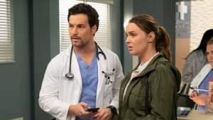 Anatomía según Grey: 15×24 – Latino HD 1080p – Online