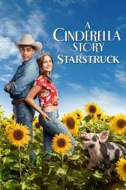 La nueva Cenicienta: Superestrella – Latino HD 1080p – Online
