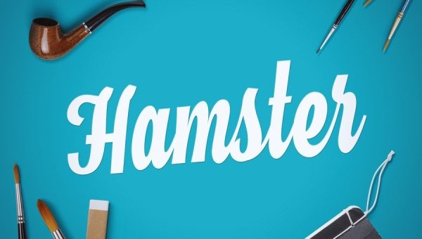 Hamster Script Font Free