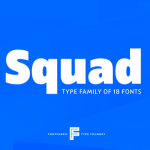 Squad Font Family Free