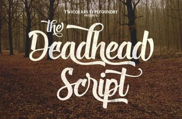 Deadhead Script Font Free