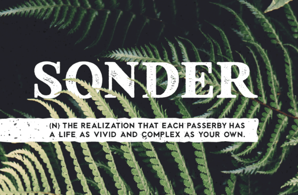 Sonder Font Family Free