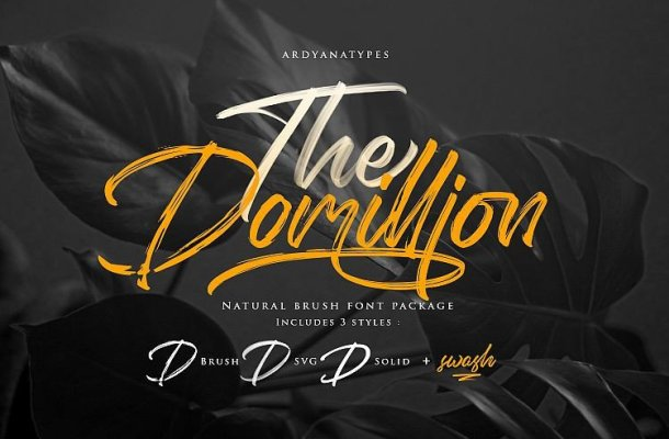 The Domillion Brush Font Free
