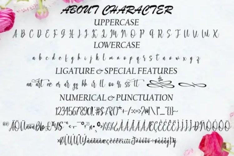 Allacarte Calligraphy Font03