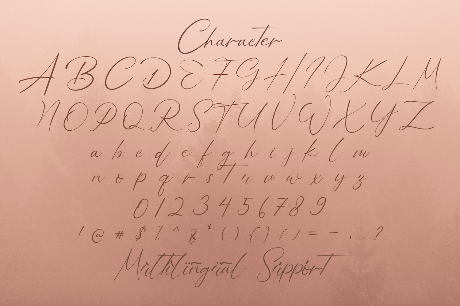 Bellamy Signature Handwritten Font-3