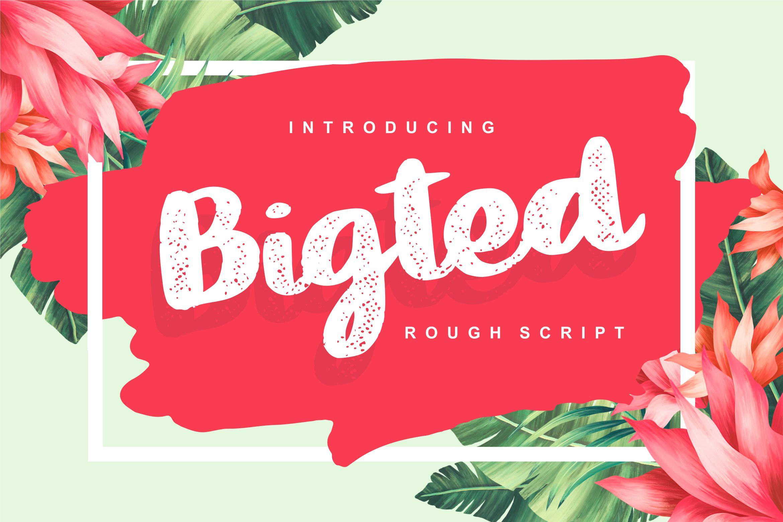 Bigted Rough Script Font-1