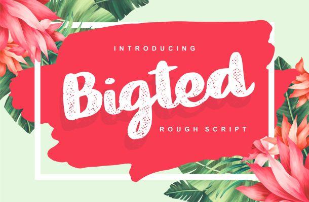Bigted Rough Script Font
