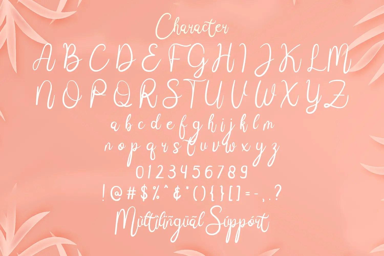 Janji Cinta Script Handwritten Font03