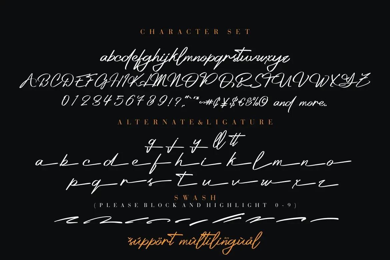 Platinum Signature Script Font-3