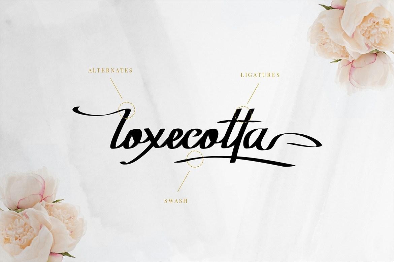 Rockyoletta-Calligraphy-Script-Font-3