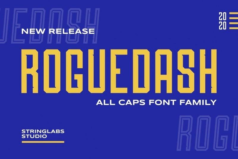 Roguedash-Stylish-Sans-Font-Family-1