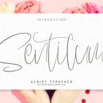 Sentilum Script  Handmade Font