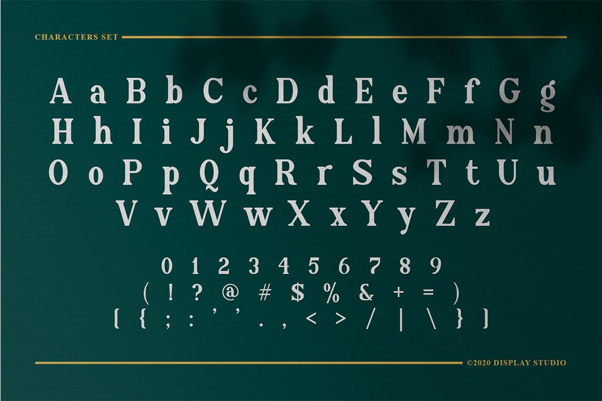 Regionaire Serif Font03