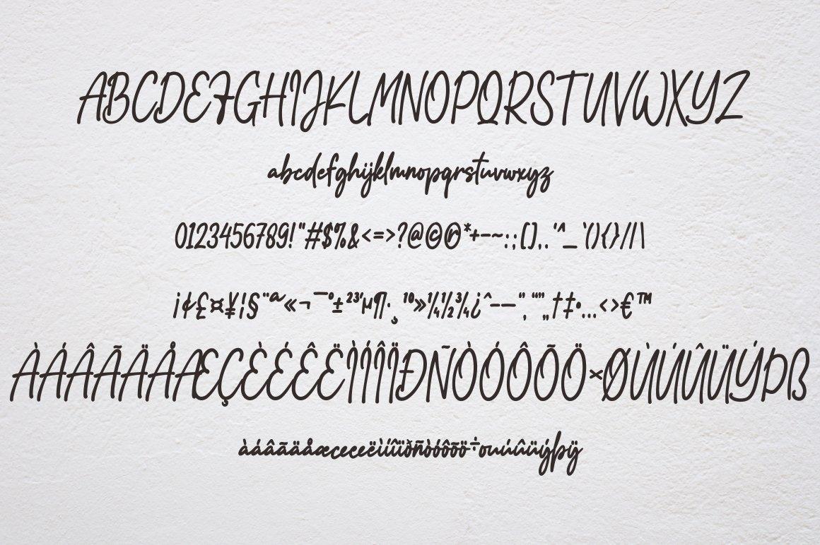 Addison Brother Handwritten Script Font-3