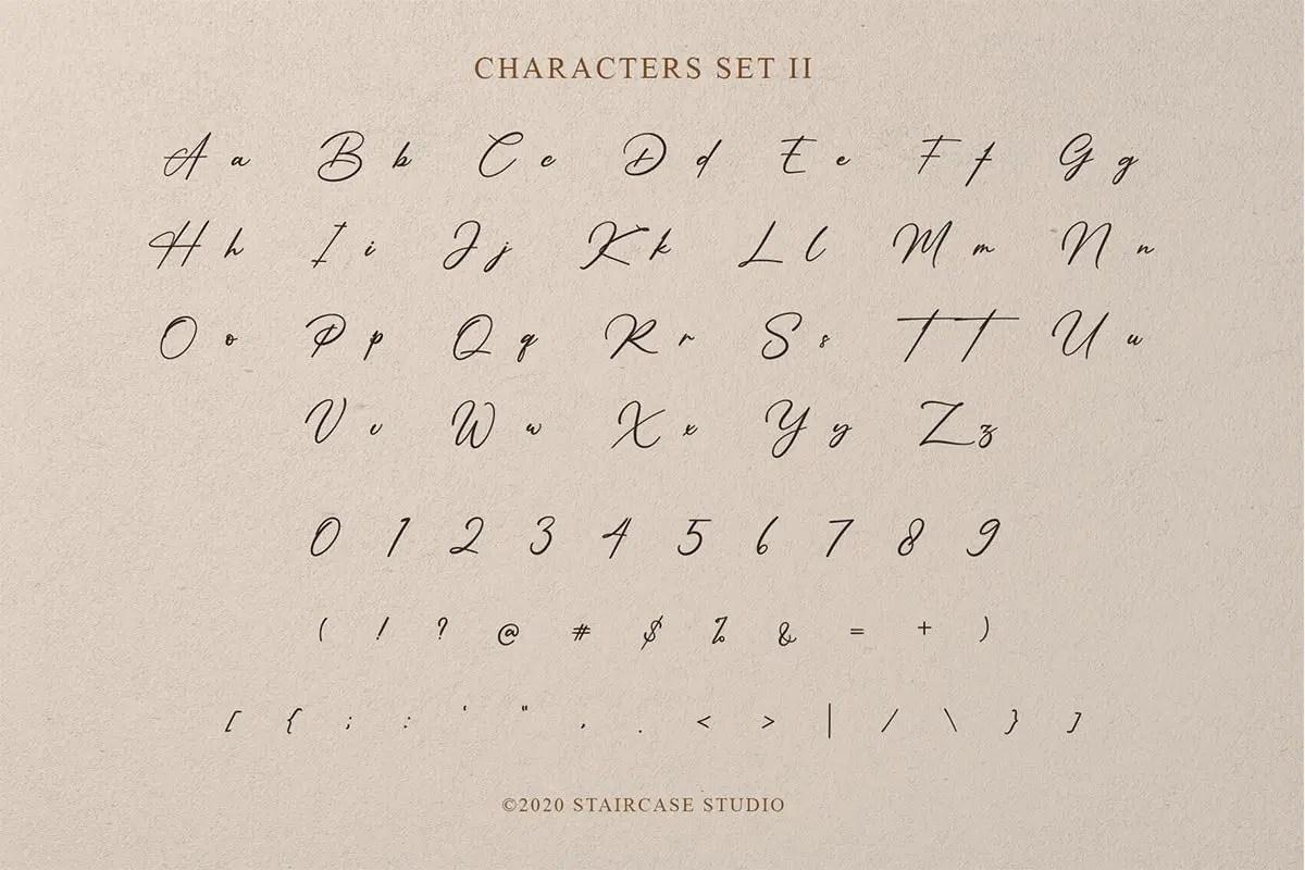 Amsterdam Signature Display Script Font Duo-4