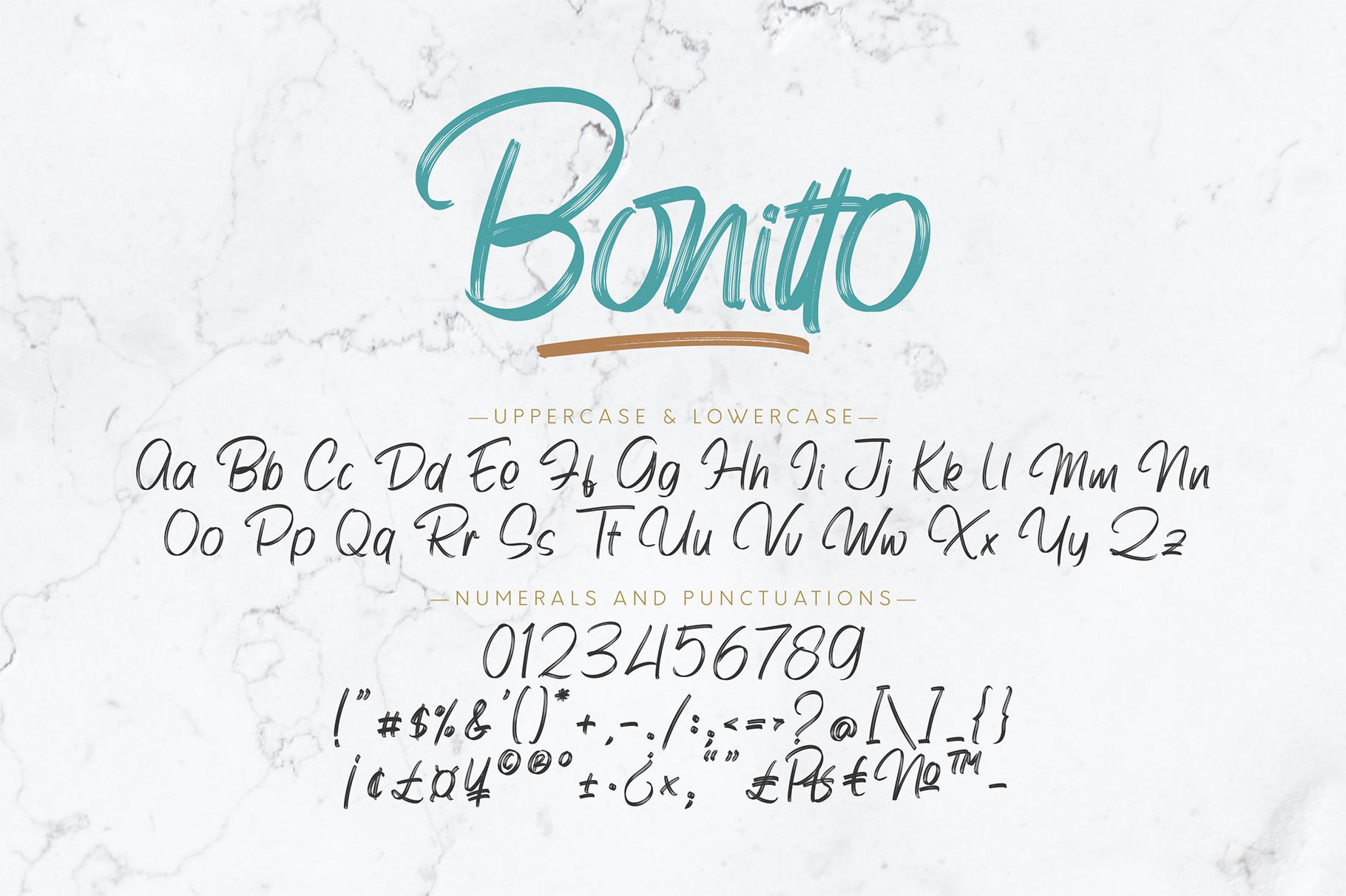 Bonitto Brush Script Font-3