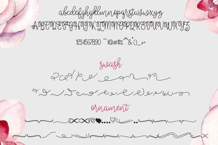 Bralyn Calligraphy Script Fonts-3
