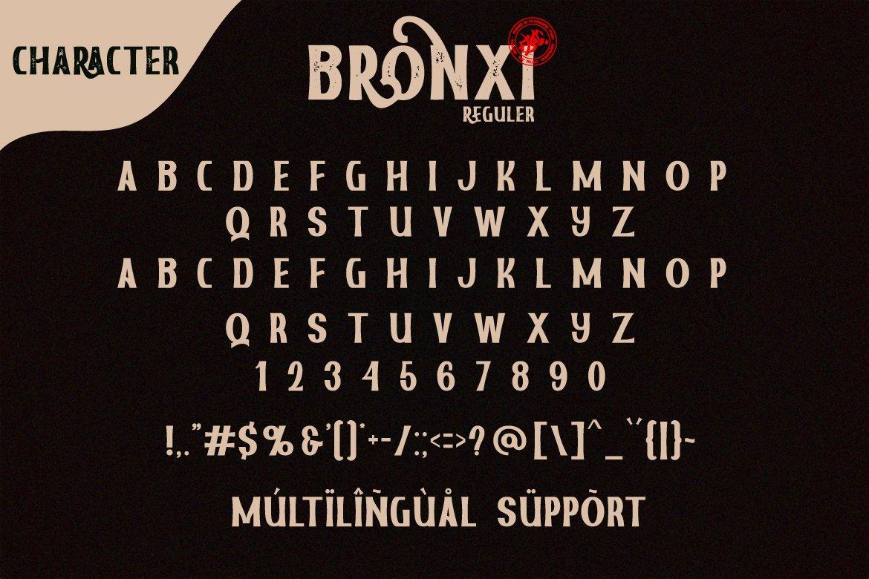 Bronxi Vintage Sans Font Family-3