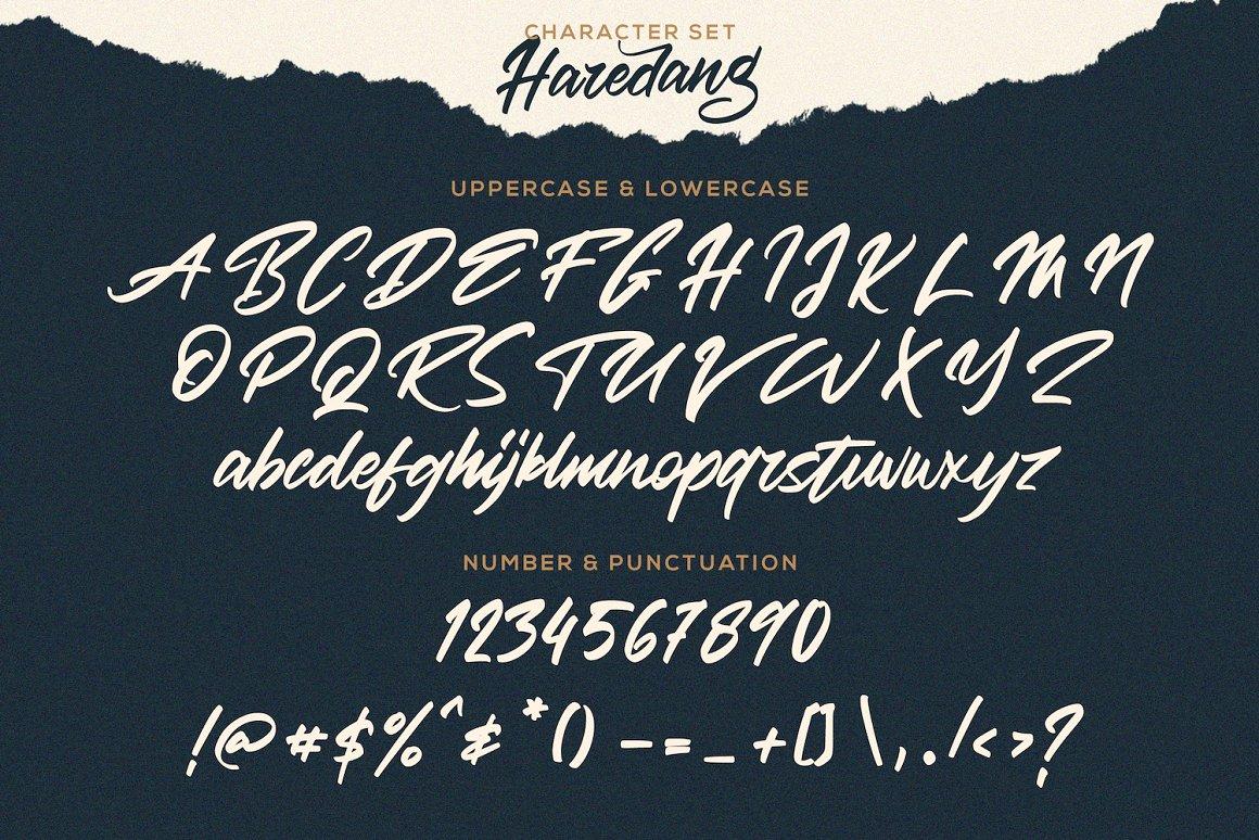 Haredang Bold Script Font-3