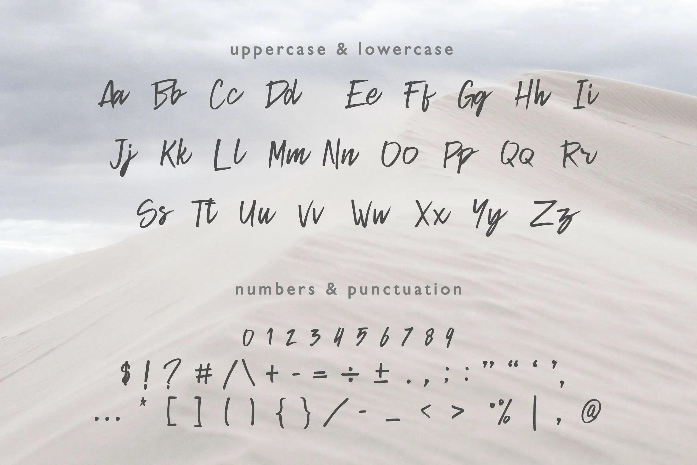 Helio Script Brush Font-3