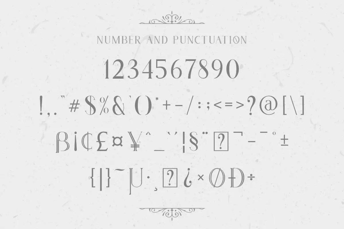 Houston Serif Font-4