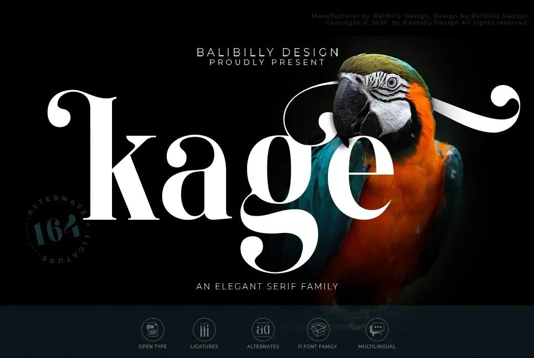 Kage An Elegant Serif Typeface-1