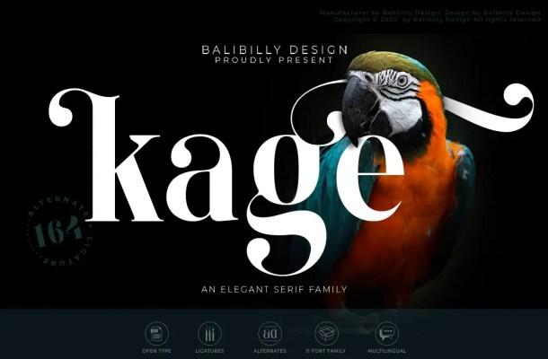 Kage An Elegant Serif Typeface