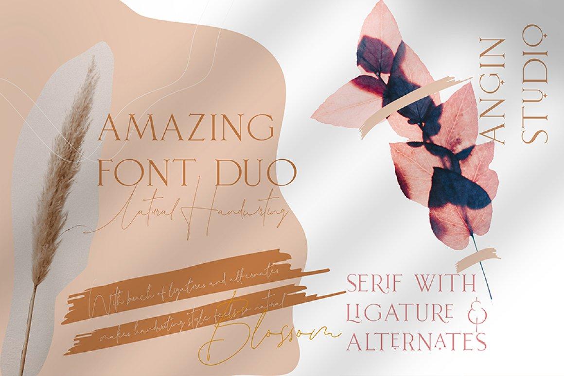 Leonetta Serif Script Font Duo-2