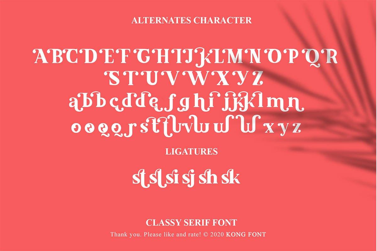 Malcolm Classy Serif Font-4