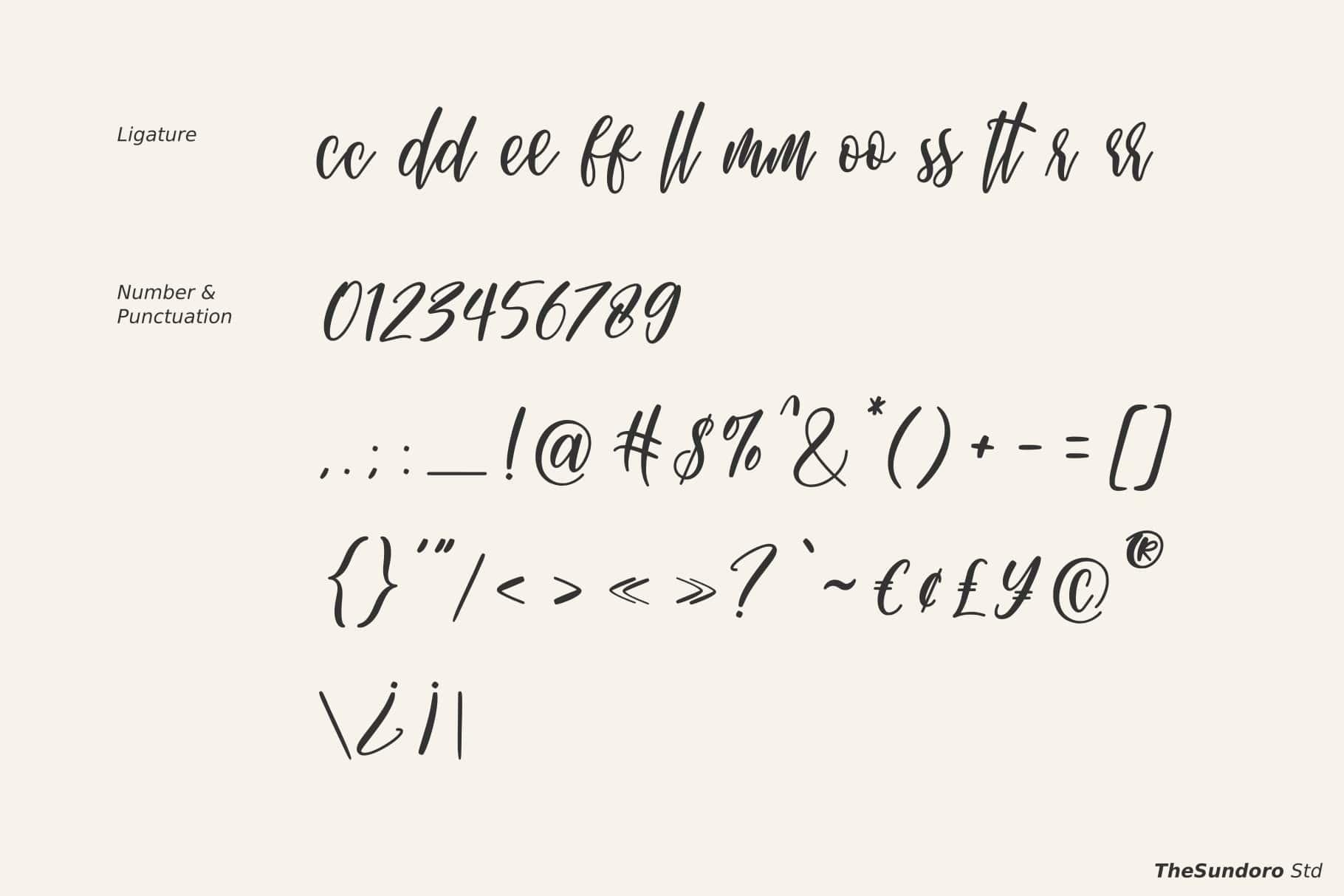 Michellate Handwritten Script Font-4