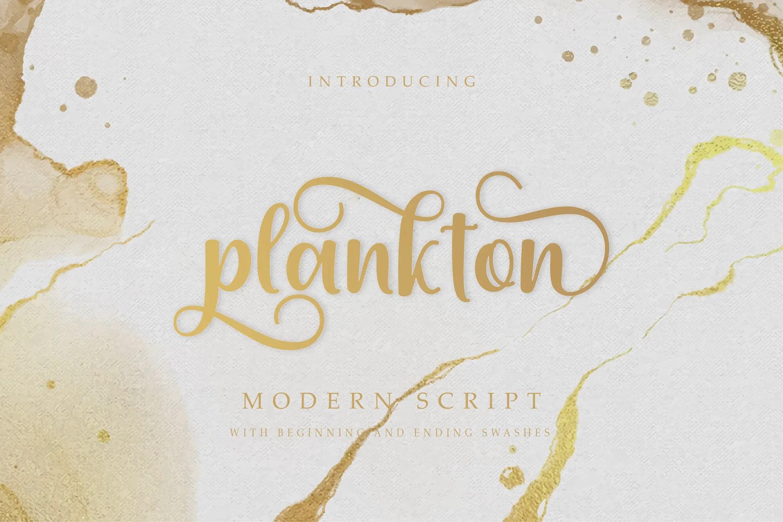 Plankton Calligraphy Script Font-1